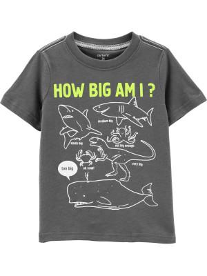 """Carter's Tricou """"cat de mare sunt?"""" 100% bumbac"""
